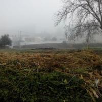 Eira Pedrinha - limpeza de terreno